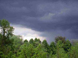 Meteo 7 agosto