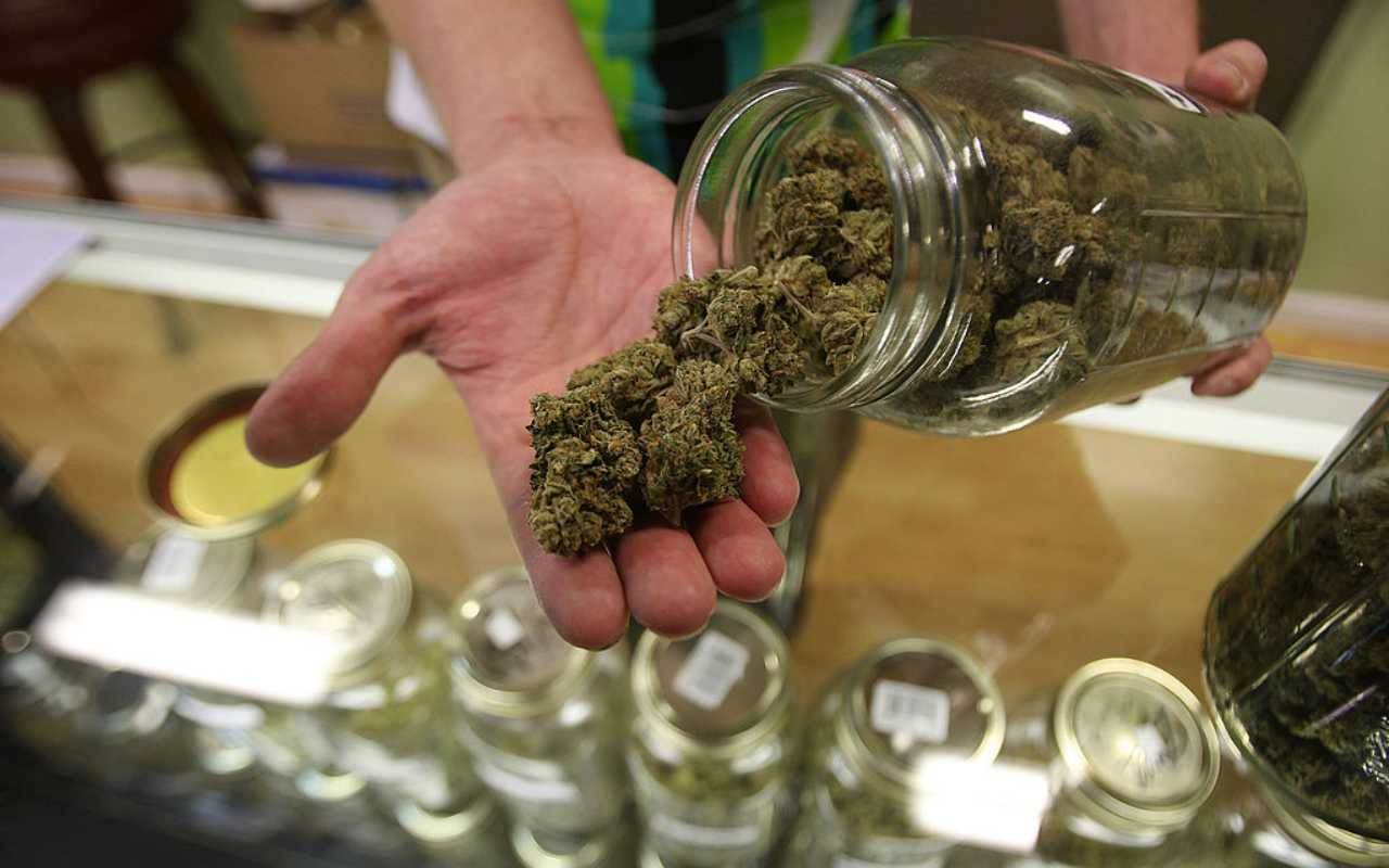 Cannabis emicrania