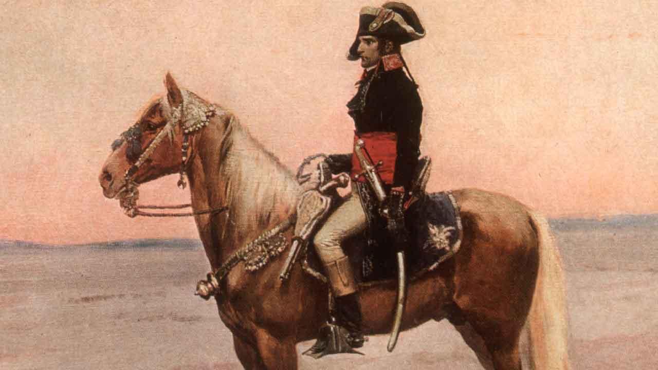Napoleone maggio
