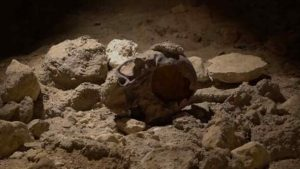resti neanderthal circeo