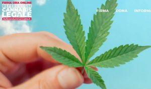 Referendum cannabis screenshot